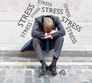 Schüssler Salze Stress